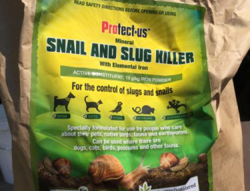 Those sneaky snails and slugs.