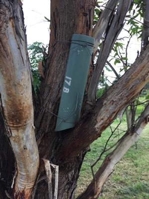 nesting box verticall
